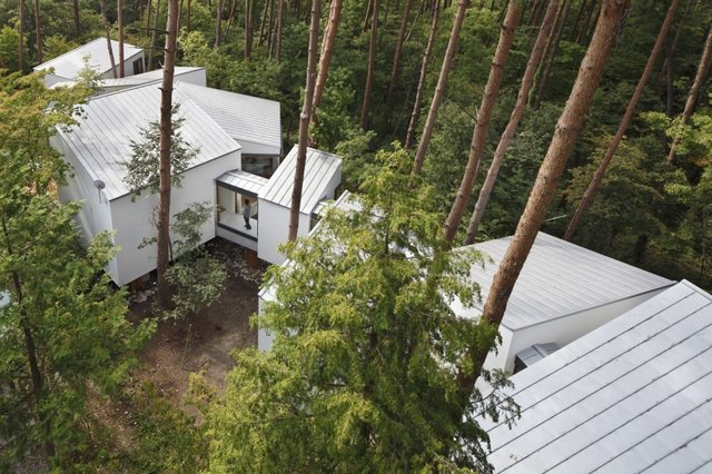 Residence in Daisen [The Aperture in the Forest] image1