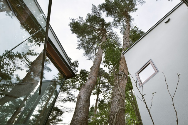 Residence in Daisen [The Aperture in the Forest] thumbnail7