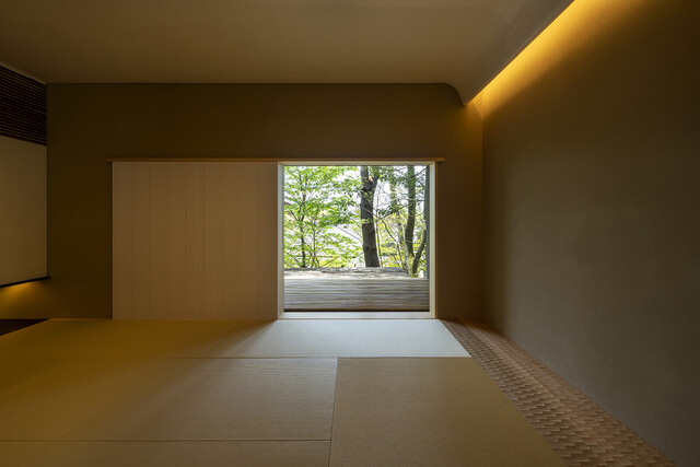 Forest House image3
